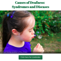 Causes of Deafness:  Syndromes and Diseases
