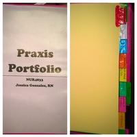 Praxis Portfolio