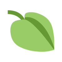 Krizizke-P1-Photosynthesis