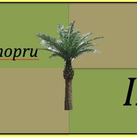 Camopru Island