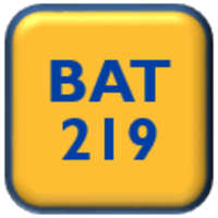 BAT 219 Internship I Template