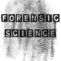 Yr 8 - Forensic Science