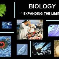 Malonek's AP Biology