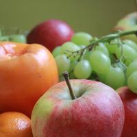 FACS I Nutrition Unit WebQuests
