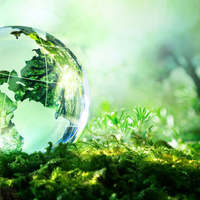 Grade 9 - Sustainable Ecosystems