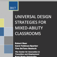 Mixed Abilities: UDL for Success