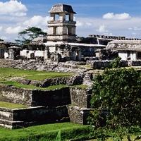 Mayan Civilization Project