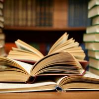 Author Study 2016-2017