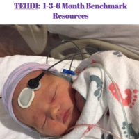 TEHDI 1-3-6 Month Benchmarks Resources