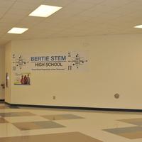 Bertie STEM SACS