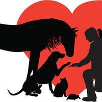 Small Animal Management