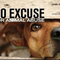 Animal Abuse: Is It Ethical To Test On Animals?