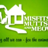 VOLM Lily Donahoe Misfits, Mutts, and Meows