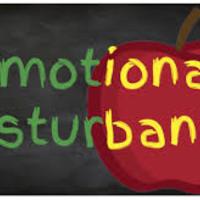 Emotional Disturbance Resource Portfolio