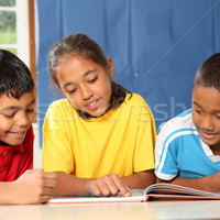 Content Reading & Writing Binder
