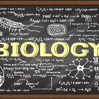 Biology EOC Prep
