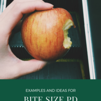 Bite Size PD