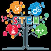 Allison Sweeney STEM Portfolio