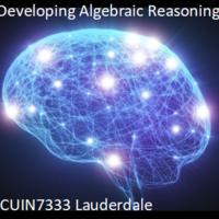 Developing Algebraic Reasoning