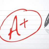 Contract Grading + Assessment
