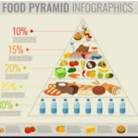 Diets & the healthy eating pyramid