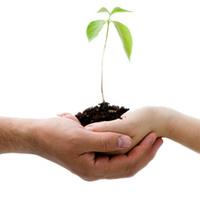 Educación para la acción: Un enfoque ambiental
