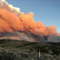 Community Wildfire Solutions