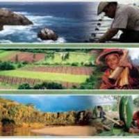 Patrimonio cultural y natural del Per��