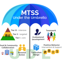 MTSS Implementation Stage 2: Installation