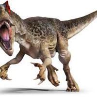 Dinosaurs - Winstead per 1,6