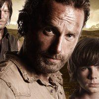 CBD 9 The Walking Dead