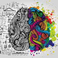 Neuro-E Portfolio