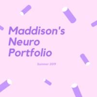Maddison's Neuro E-Portfolio