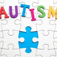 Evidence Based Strategies for Students with Autism