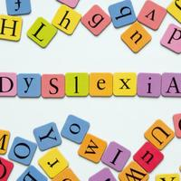 Dyslexia Resource Notebook