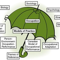 Occupational Therapy Models & Theories