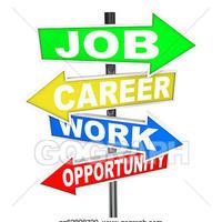 Employment Portfolio