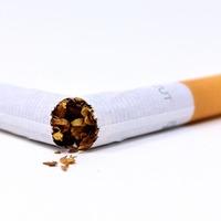 La Influencia del consumo de tabaco en el ambiente, la salud y l