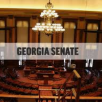 Georgia State Senate 2020