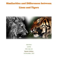 FPES0560 Sample Project Folder - Lions and Tigers