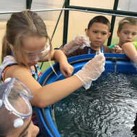 Hydroponics, Aquaponics & Kids