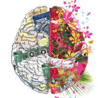 Neuro e-Portfolio