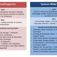 SST 1 Literacy Supports