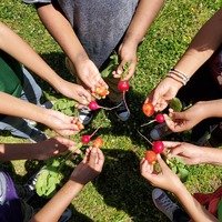 Growing School Gardens - Curricula and Resource Binder