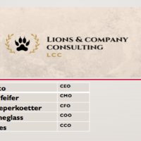 Lions & Company Consulting