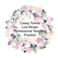 Professional Teaching Practice - Critical Task - Live Binder
