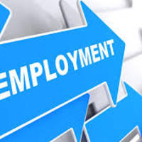 Employment Apps in Transition