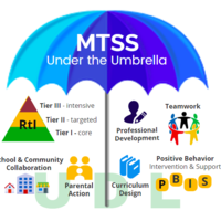 Mutli Tiered Systems of Support