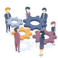 Collaboration and Consultation
