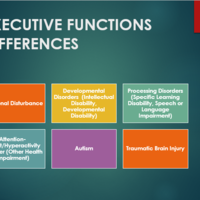 Specific Learning Disability: Resource Portfolio
